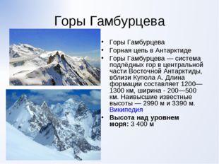 Горы Гамбурцева Горы Гамбурцева Горная цепь в Антарктиде Горы Гамбурцева — си
