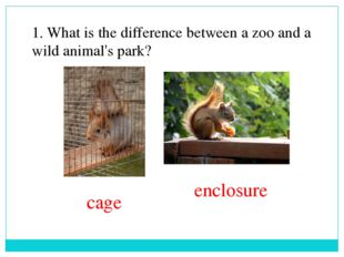1. What is the difference between a zoo and a wild animal's park? enclosure c