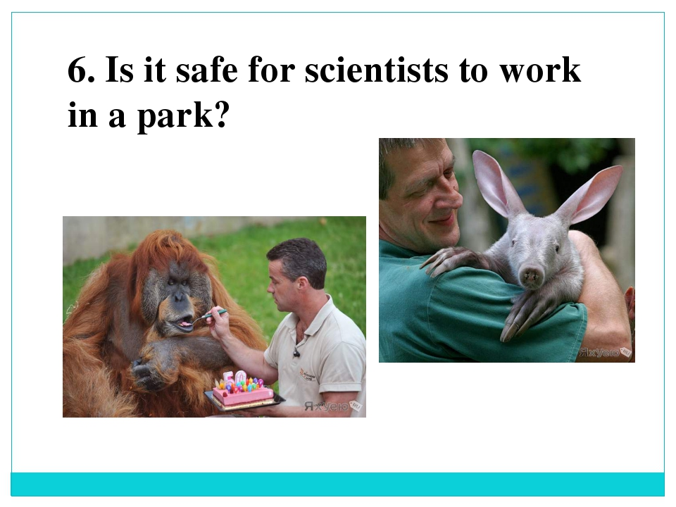 6. Is it safe for scientists to work in a park?