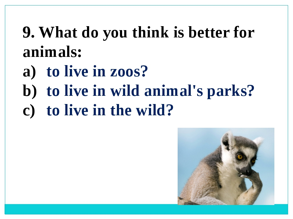 9. What do you think is better for animals: to live in zoos? to live in wild...