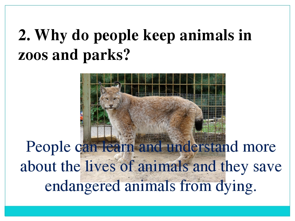 2. Why do people keep animals in zoos and parks? People can learn and underst...