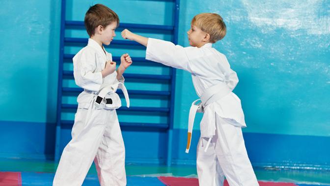 Biglion :: Предложение :: 1 или 3 месяца безлимитных занятий айкидо для детей и взрослых в новом специализированном зале Российс