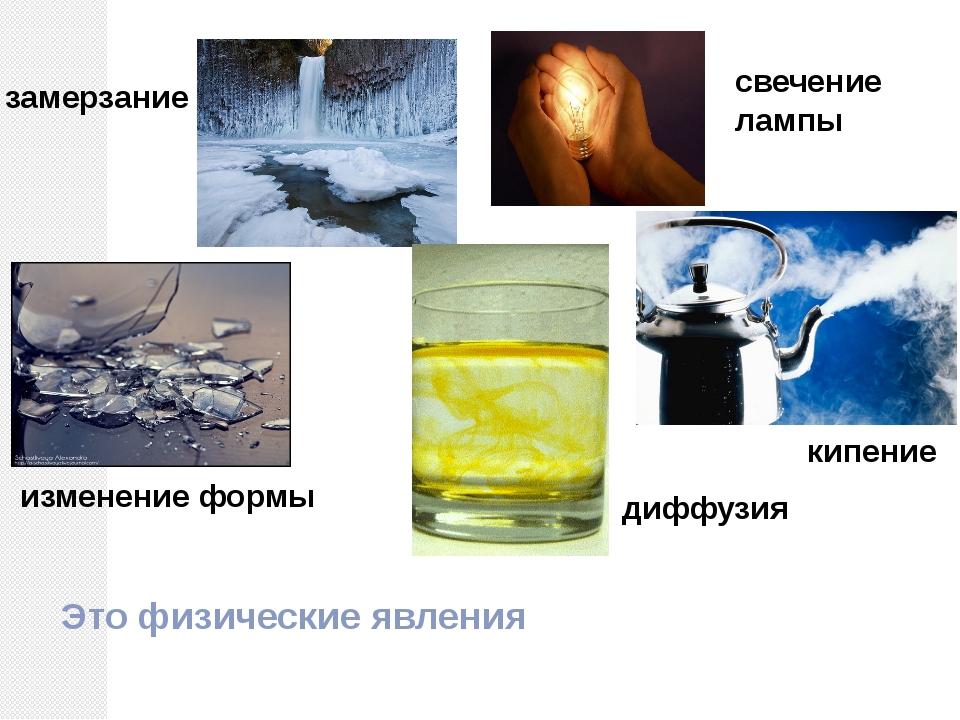 замерзание свечение лампы изменение формы кипение диффузия Это физические явл...