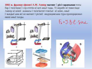 1802 ж. француз физигі А.М. Ампер магнит өрісі тарапынан тогы бар өткізгішке