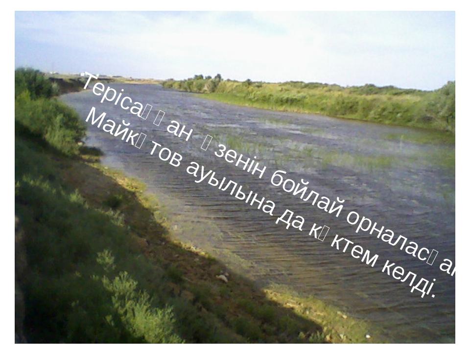Терісаққан өзенін бойлай орналасқан Майкөтов ауылына да көктем келді.