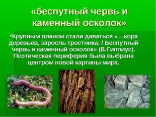 «беспутный червь и каменный осколок» Крупным планом стали даваться «…кора дер