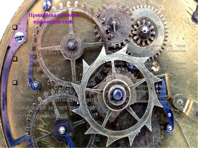 Принципы сетевого взаимодействия возможность продвижения продуктов инновацио...