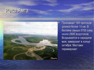 Река Амга Принимает 195 притоков длиной более 10 км. В бассене свыше 5700 озе