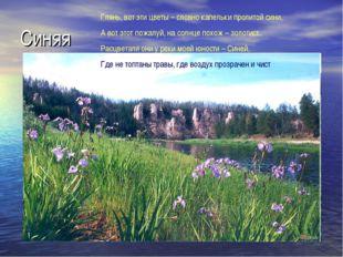 Синяя Глянь, вот эти цветы – словно капельки пролитой сини, А вот этот пожалу