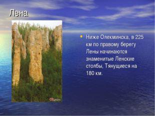 Лена Ниже Олекминска, в 225 км по правому берегу Лены начинаются знаменитые Л