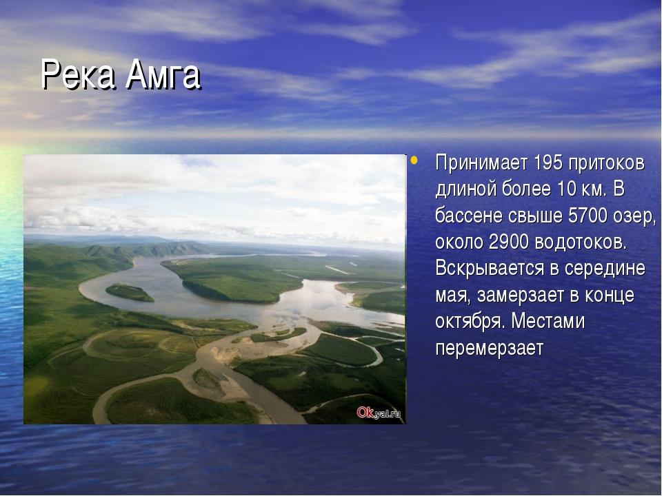 Река Амга Принимает 195 притоков длиной более 10 км. В бассене свыше 5700 озе...