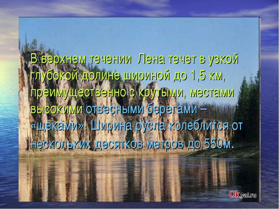 В верхнем течении Лена течет в узкой глубокой долине шириной до 1,5 км, преим...