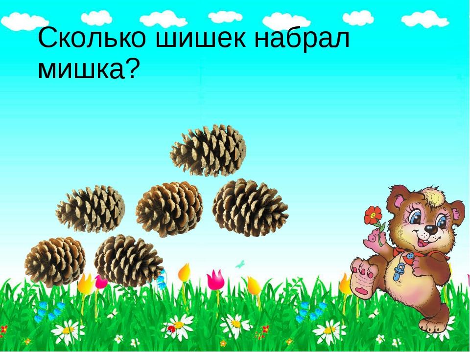 Сколько шишек набрал мишка?