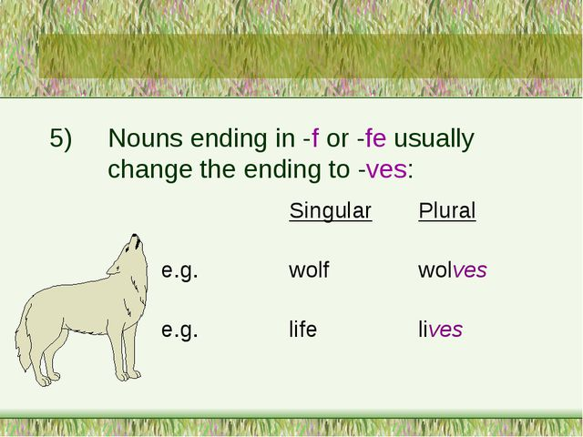 5)	Nouns ending in -f or -fe usually 		change the ending to -ves: