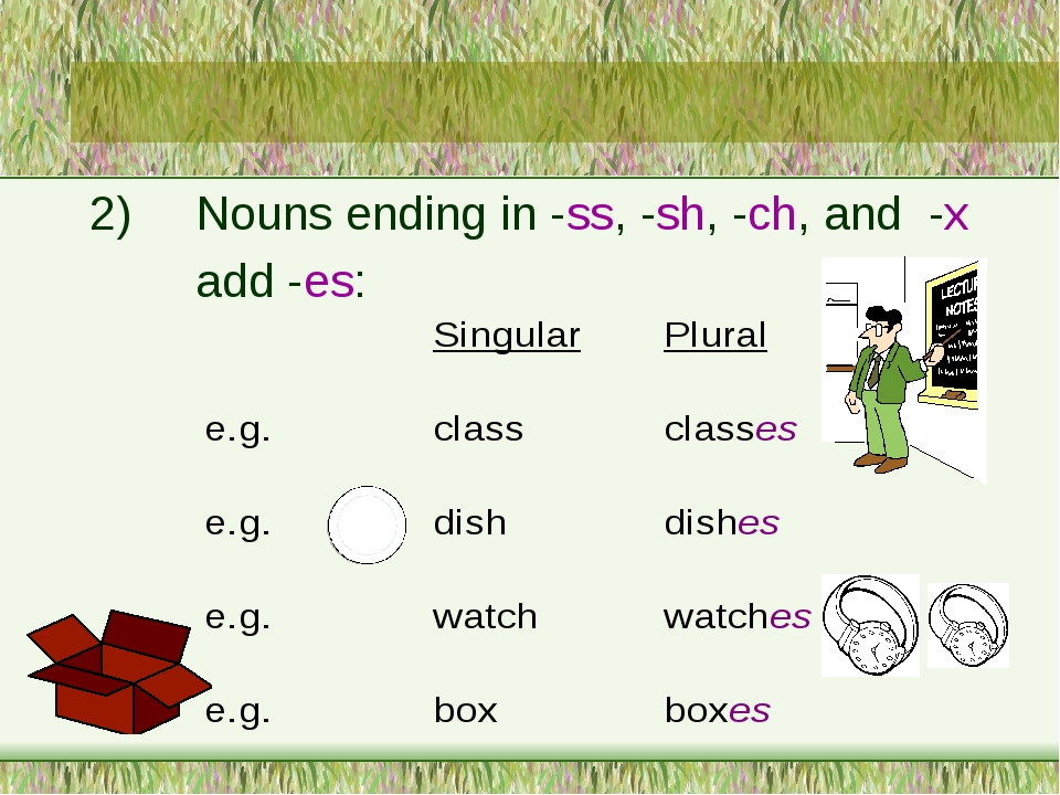 2)	Nouns ending in -ss, -sh, -ch, and -x 		add -es: