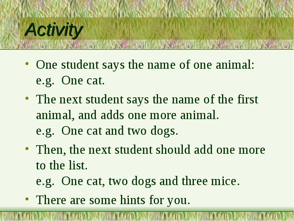 Activity One student says the name of one animal: e.g. One cat. The next stud...