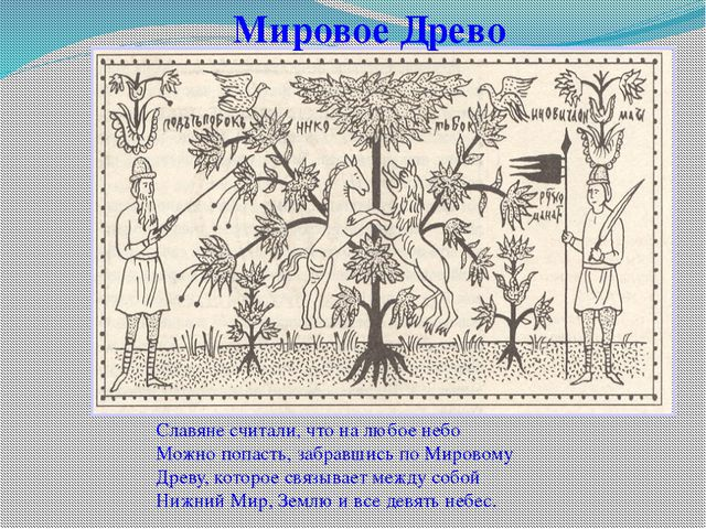 Мировое Древо Славяне считали, что на любое небо Можно попасть, забравшись по...