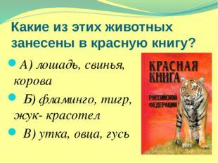 Какие из этих животных занесены в красную книгу? А) лошадь, свинья, корова Б)