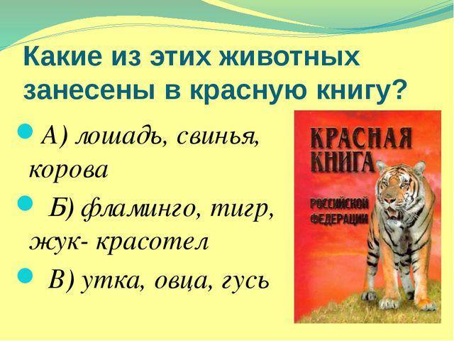 Какие из этих животных занесены в красную книгу? А) лошадь, свинья, корова Б)...