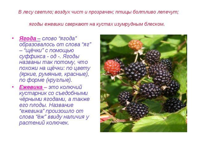 В лесу светло; воздух чист и прозрачен; птицы болтливо лепечут; ягоды ежевики...