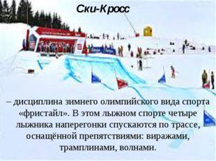 Ски-Кросс – дисциплина зимнего олимпийского вида спорта «фристайл». В этом лы