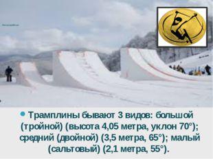 Лыжная акробатика Трамплины бывают 3 видов: большой (тройной) (высота 4,05м