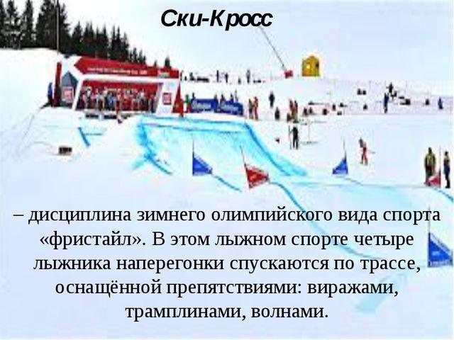 Ски-Кросс – дисциплина зимнего олимпийского вида спорта «фристайл». В этом лы...