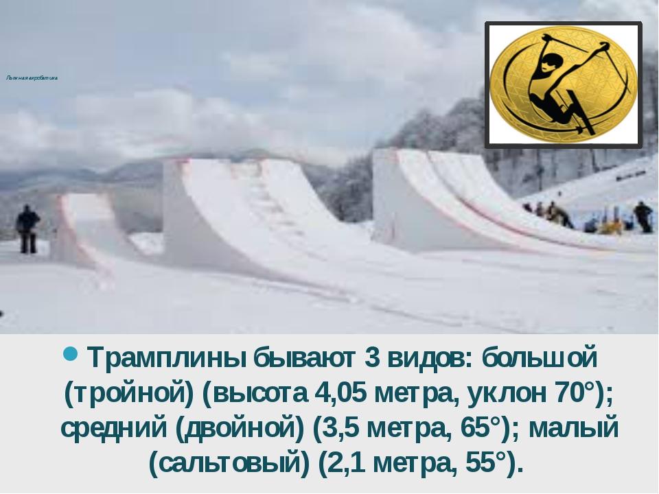 Лыжная акробатика Трамплины бывают 3 видов: большой (тройной) (высота 4,05м...