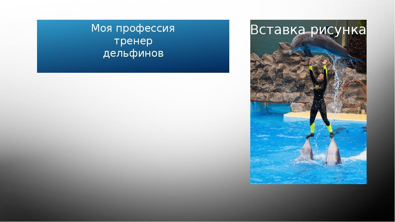 Моя профессия тренер дельфинов