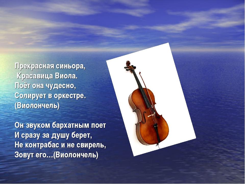 Прекрасная синьора, Красавица Виола. Поёт она чудесно, Солирует в оркестре....