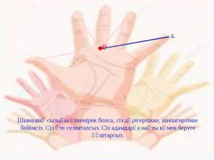 5. О Шынашақ сызығы үлкенірек болса, сіз дәрігерлікке, шипагерлікке бейімсіз.