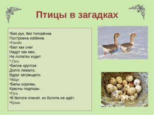 Птицы в загадках Без рук, без топорёнка Построена избёнка. Гнездо Бел как сне