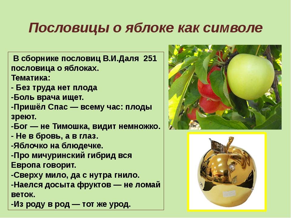 Пословицы о яблоке как символе В сборнике пословиц В.И.Даля 251 пословица о я...