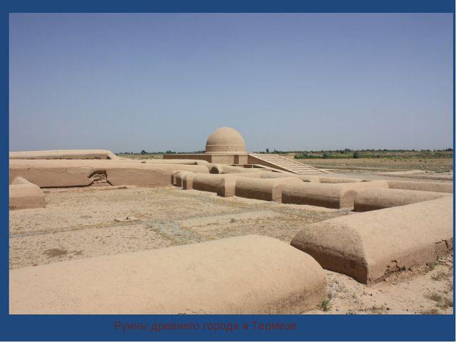 Руины древнего города в Термезе