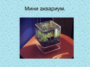 Мини аквариум.