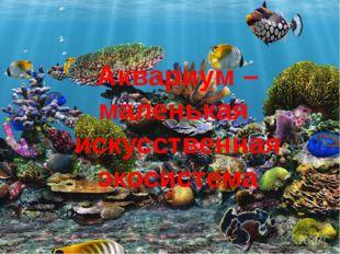 Аквариум – маленькая искусственная экосистема