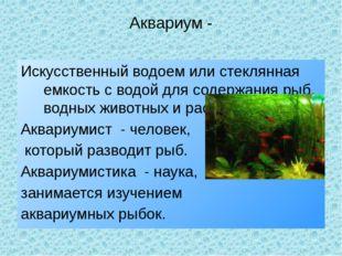 Аквариум - Искусственный водоем или стеклянная емкость с водой для содержания