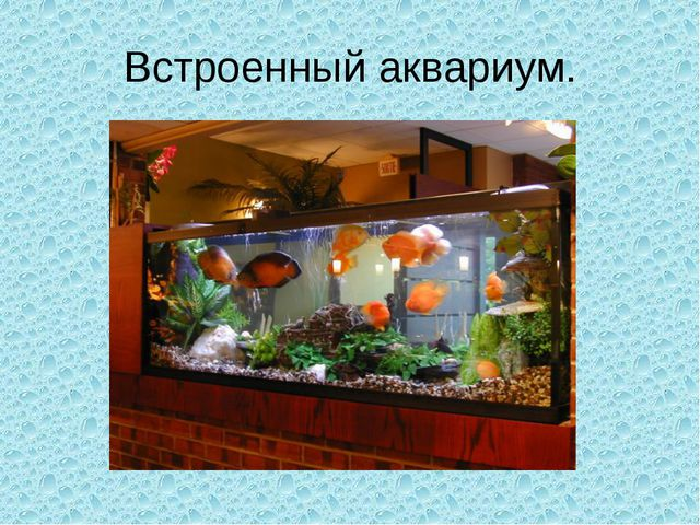 Встроенный аквариум.