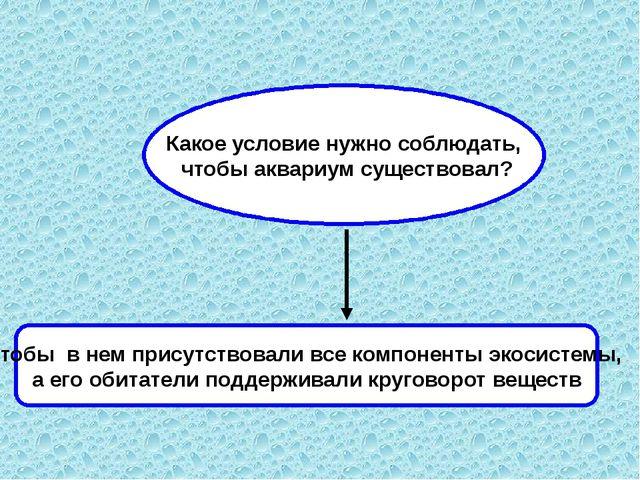 Какое условие нужно соблюдать, чтобы аквариум существовал? Чтобы в нем присут...