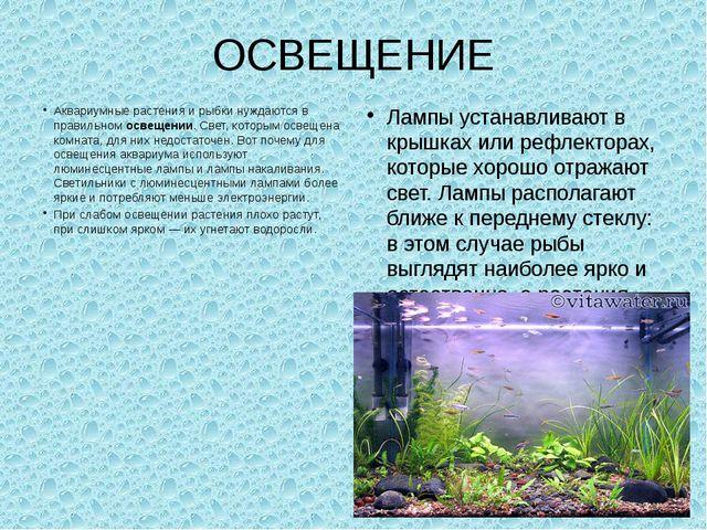 ОСВЕЩЕНИЕ Аквариумные растения и рыбки нуждаются в правильном освещении. Свет...