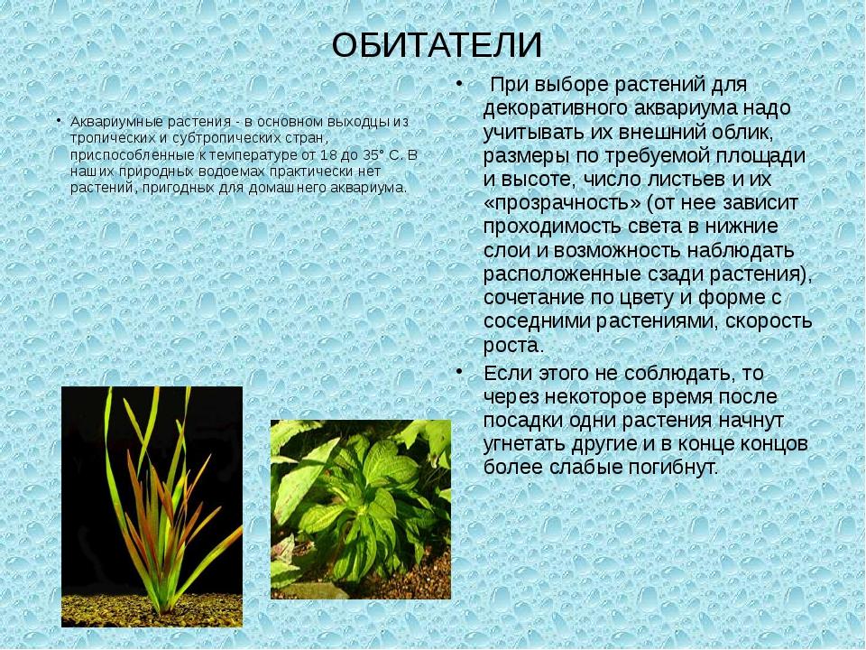 ОБИТАТЕЛИ Аквариумные растения - в основном выходцы из тропических и субтропи...