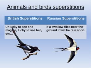 Animals and birds superstitions British Superstitions Russian Superstitions U