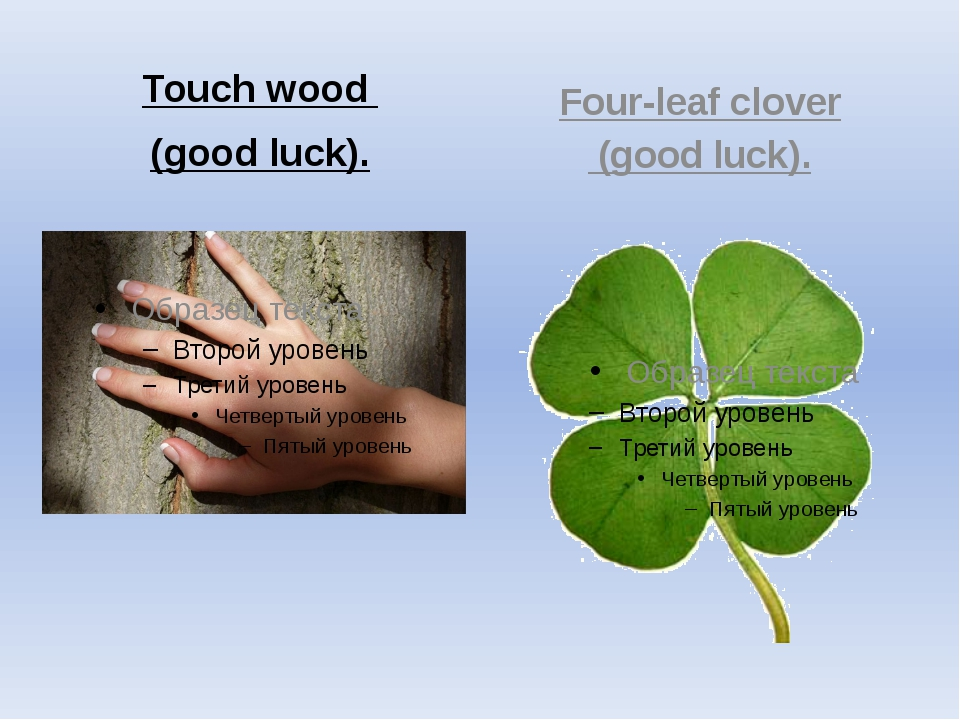 Touch wood (good luck). Four-leaf clover (good luck).