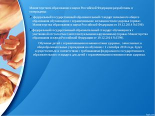 Министерством образования и науки Российской Федерации разработаны и утвержде