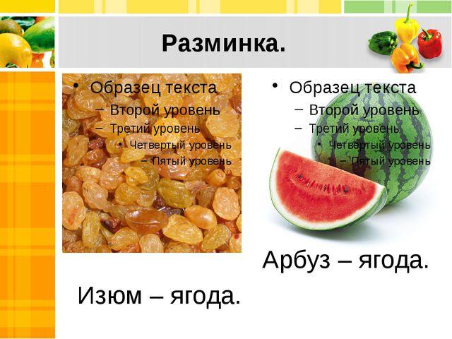 Разминка. Изюм – ягода. Арбуз – ягода.