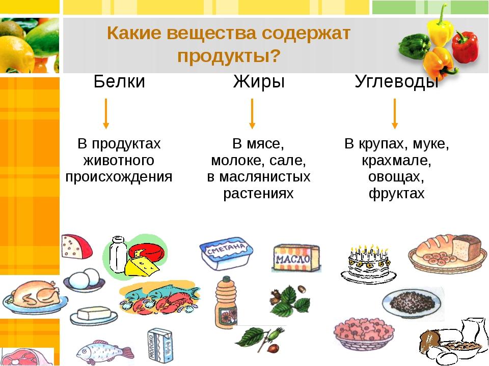 Какие вещества содержат продукты? Белки Жиры Углеводы В продуктах животного...
