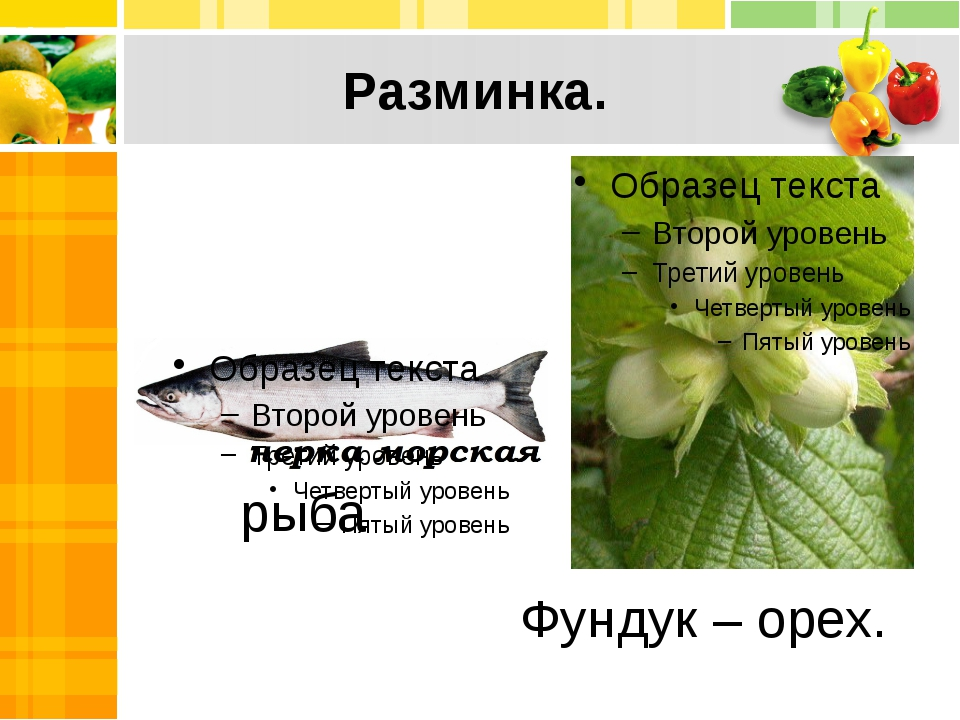 Разминка. рыба Фундук – орех.