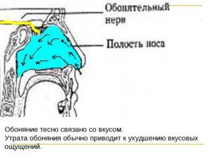 Обоняние тесно связано со вкусом. Утрата обоняния обычно приводит к ухудшению