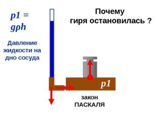 р1 = gρh р1 Давление жидкости на дно сосуда закон ПАСКАЛЯ Почему гиря остано