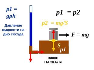 р1 = р2 р1 = gρh Давление жидкости на дно сосуда р1 закон ПАСКАЛЯ F = mg S р